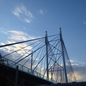 The Nelson Mandela Bridge.
